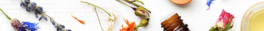 Méthode de fabrication authentique des fleurs de Bach :