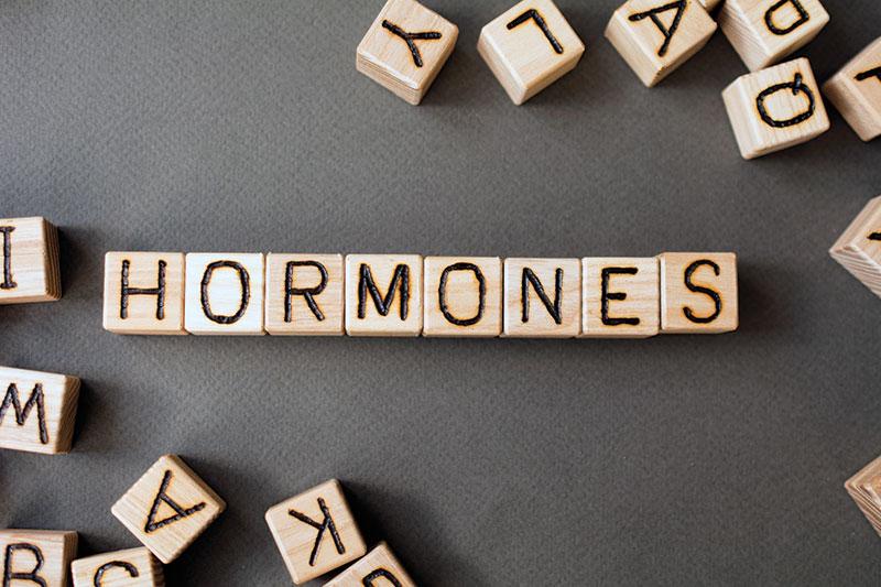 Tout savoir sur l'hormonothérapie