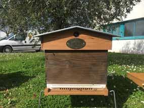 ruche installee devant -laboratoire copmed